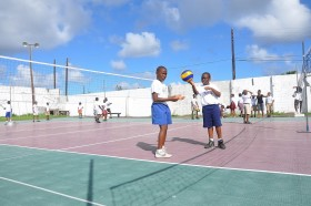 Cool Volley