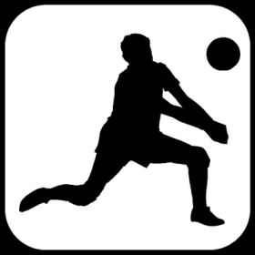 Volleyball-Player